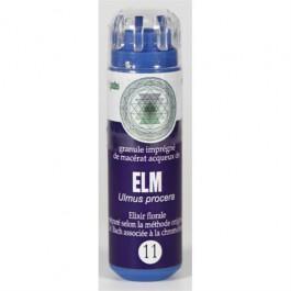 11 Fleur de bach Elm en granules sans alcool Eumadis