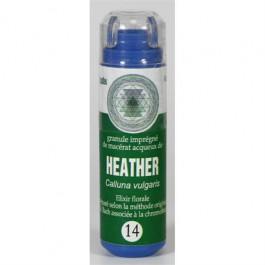 14 Fleur de bach Heather en granules sans alcool Eumadis