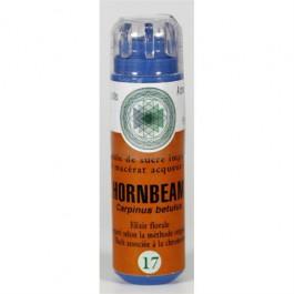 17 Fleur de bach Hornbeam en granules sans alcool Eumadis