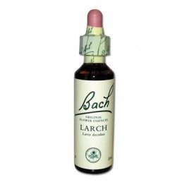 19 Larch original goutte et alcool Originales