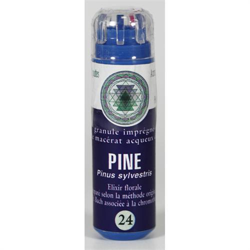 24 Fleur de bach Pine en granules sans alcool Eumadis
