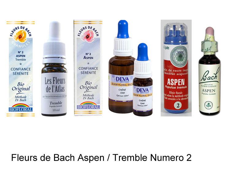 La fleur de Bach Aspen ou Tremble