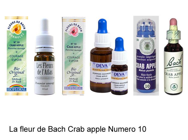 La fleur de Bach Pommier sauvage ou Crab apple