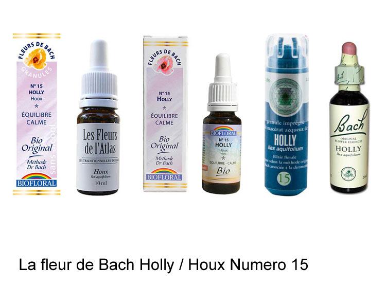 La fleur de Bach Houx ou Holly
