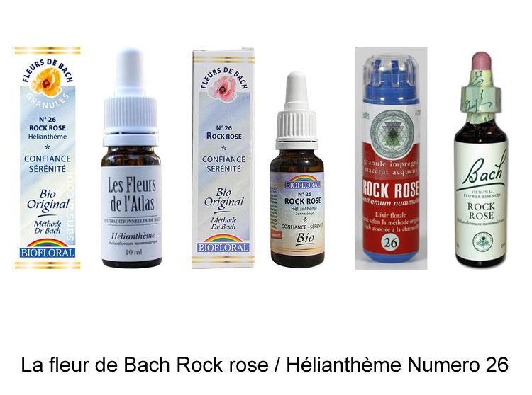 La fleur de Bach Hélianthème ou Rock rose