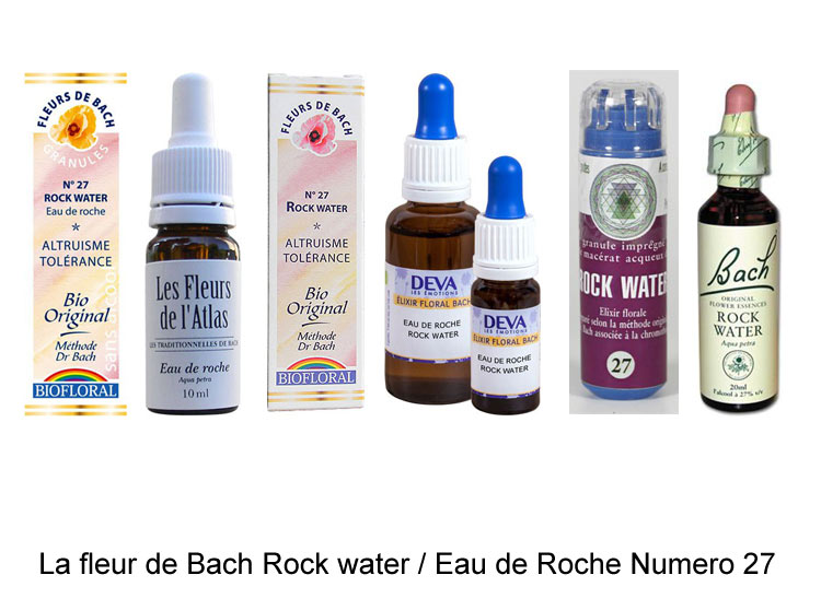 La fleur de Bach Eau de roche ou Rock water