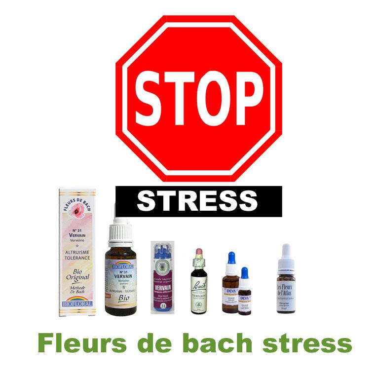 La fleur de Bach pour ne plus stresser